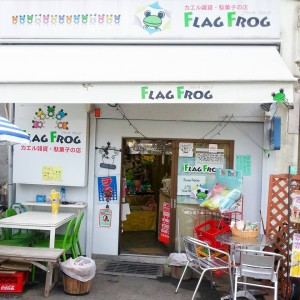 FLAG FROG