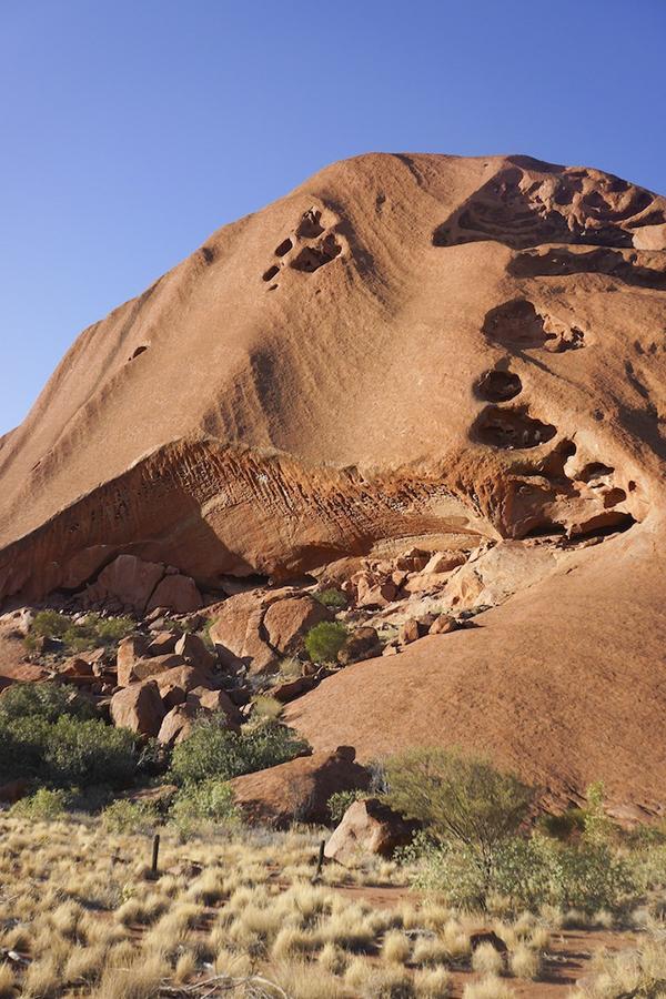 ざらざらとした質感の岩肌は、この巨大な一枚岩が砂岩であることの証。